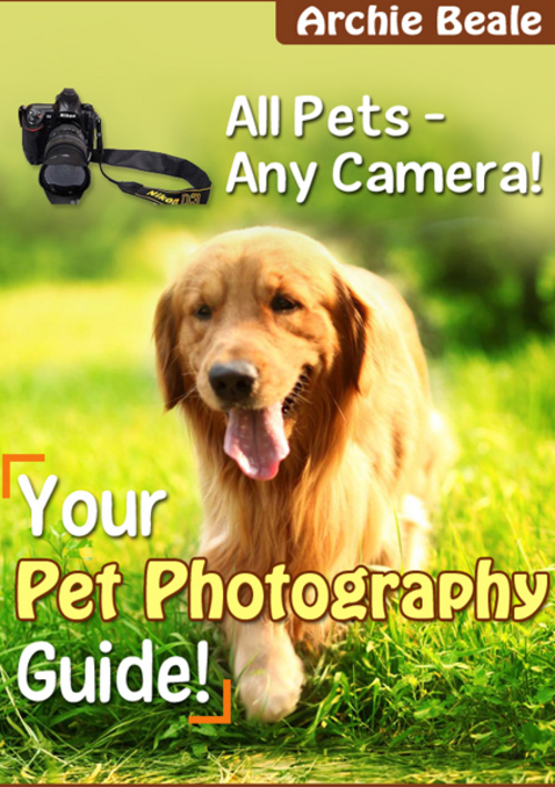Product picture Your Pet Photography Guide